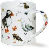 Coastal Birds Field Guide Mug