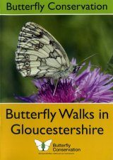 Butterfly Walks in Gloucestershire Image