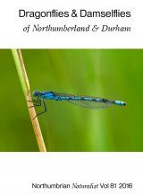 Dragonflies & Damselflies of Northumberland & Durham