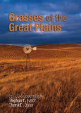 Grasses of the Great Plains Image