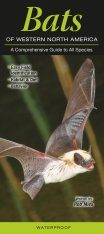Bats of Western North America