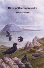 Birds of Caernarfonshire