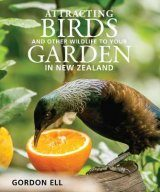 Attracting Birds and Other Wildlife to Your Garden in New Zealand