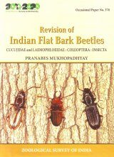 Revision of Indian Flat Bark Beetles