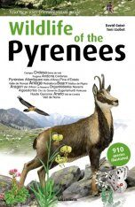Wildlife of the Pyrenees