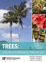 Trees – South Florida and the Keys