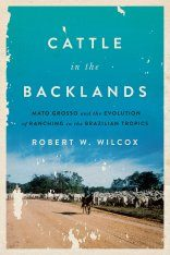 Cattle in the Backlands