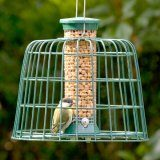 Guardian Peanut Feeder
