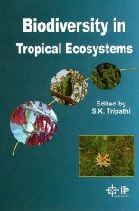 Biodiversity in Tropical Ecosystems