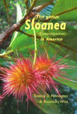 The Genus Sloanea (Elaeocarpaceae) in America