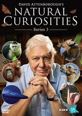 David Attenborough's Natural Curiosities Series 3 (Region 2)