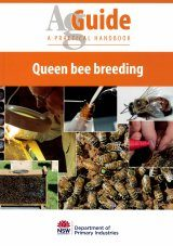 Queen Bee Breeding