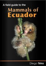 A Field Guide to the Mammals of Ecuador