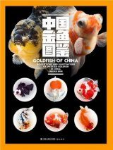 Goldfish of China: Descriptions and Illustrations of Diversed Goldfish in China [English / Chinese]