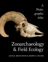 Zooarchaeology & Field Ecology