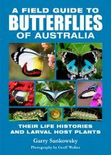 A Field Guide to Butterflies of Australia