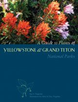 A Guide to Plants of Yellowstone & Grand Teton National Parks