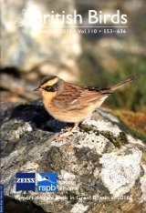 British Birds Report on Rare Birds in Great Britain in 2016