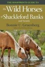 The Hoofprints Guide to the Wild Horses of Shackleford Banks and Vicinity
