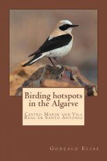 Birding Hotspots in the Algarve: Castro Marim and Vila Real de Santo António