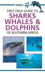 First Field Guide to Sharks, Whales & Dolphins of Southern Africa