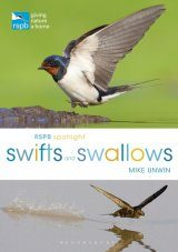 RSPB Spotlight: Swifts and Swallows