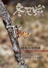 Winter Geometrid Moths of Japan [Japanese]