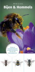 Minigids Bijen & Hommels [Mini Guide to Bees & Bumblebees]