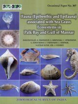 Fauna (Epibenthic and Epifauna) Associated with Sea Grass Ecosystems in Palk Bay and Gulf of Mannar