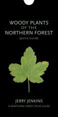 Woody Plants of the Northern Forest: Quick Guide