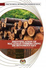 Identification of Malaysia Timber Using Dichotomous Key