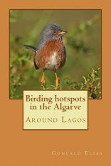 Birding Hotspots in the Algarve: Around Lagos