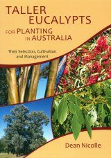 Taller Eucalypts for Planting in Australia