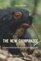 The New Chimpanzee