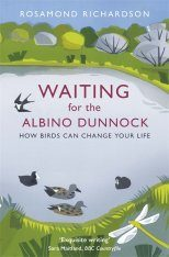 Waiting for the Albino Dunnock