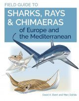 Field Guide to Sharks, Rays & Chimaeras of Europe and the Mediterranean