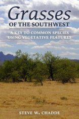 Grasses of the Southwest