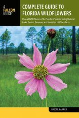 Complete Guide to Florida Wildflowers