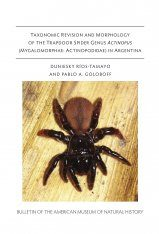 Taxonomic Revision and Morphology of the Trapdoor Spider Genus Actinopus (Mygalomorphae, Actinopodidae) in Argentina