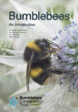 Bumblebees: An Introduction