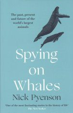 Spying on Whales