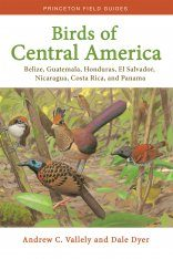 Birds of Central America