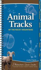 Animal Tracks of the Rocky Mountains