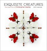 Exquisite Creatures Insect Art: 2019 Wall Calendar