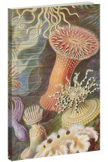 Sea Life Notebook