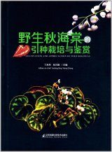 Cultivation and Appreciation of Wild Begonia [English / Chinese]
