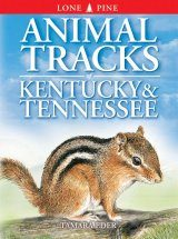 Animal Tracks of Kentucky & Tennessee