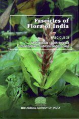 Fascicles of Flora of India, Fascicle 28