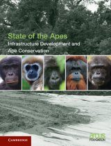 Infrastructure Development and Ape Conservation