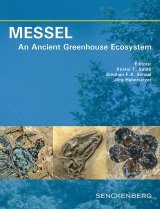 Messel: An Ancient Greenhouse Ecosystem